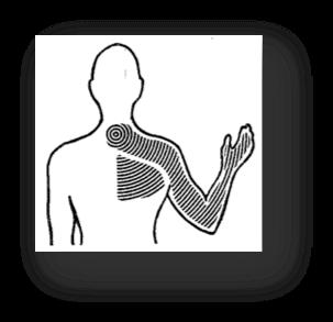 upper-body-mckenzie